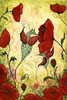 Fantasiewesen, Illustration, Mohn, Mohnblumen