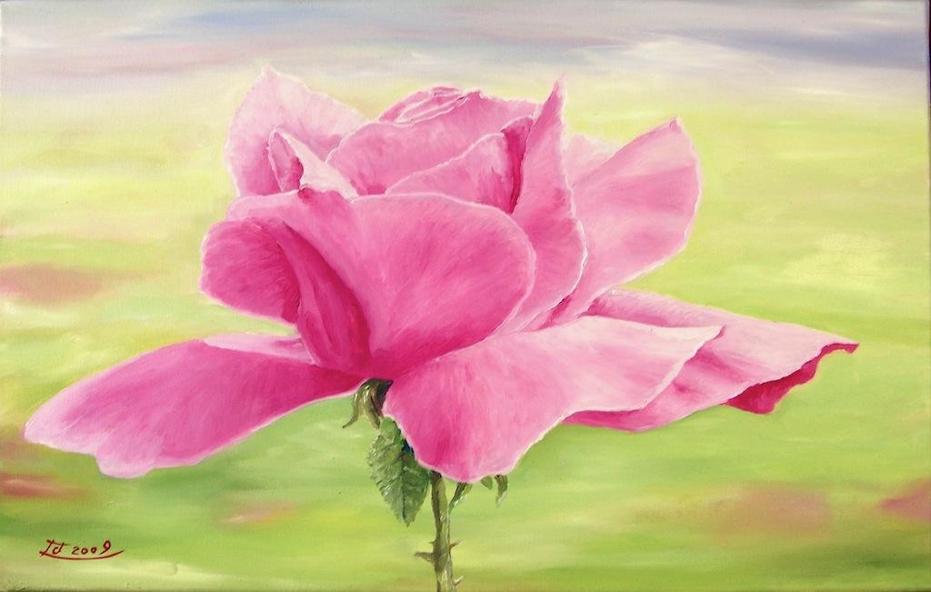 bild rose rosa malerei pflanzen von chrism bei kunstnet. Black Bedroom Furniture Sets. Home Design Ideas
