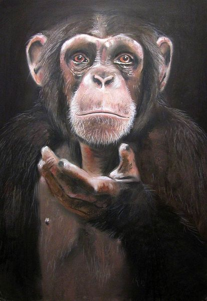 Affe, Schimpanse, Bruder, Afrika, Geste, Malerei