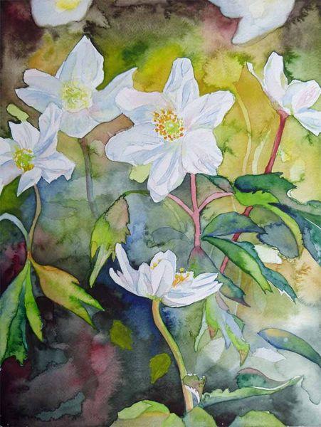Aquarellmalerei, Buschwindröschen, Frühlingsaquarell, Anemonen, Frühlingsanfang, Frühling