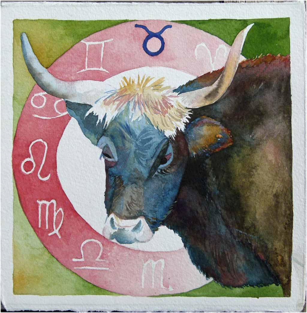 bild april mai bison schottische hochlandrind von frank koebsch bei kunstnet. Black Bedroom Furniture Sets. Home Design Ideas