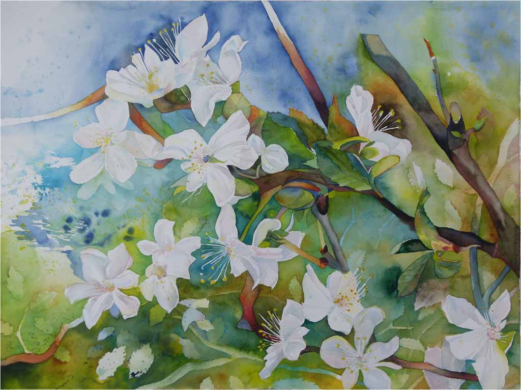 wildwuchs in der obstblüte c aquarell von frank koebsch