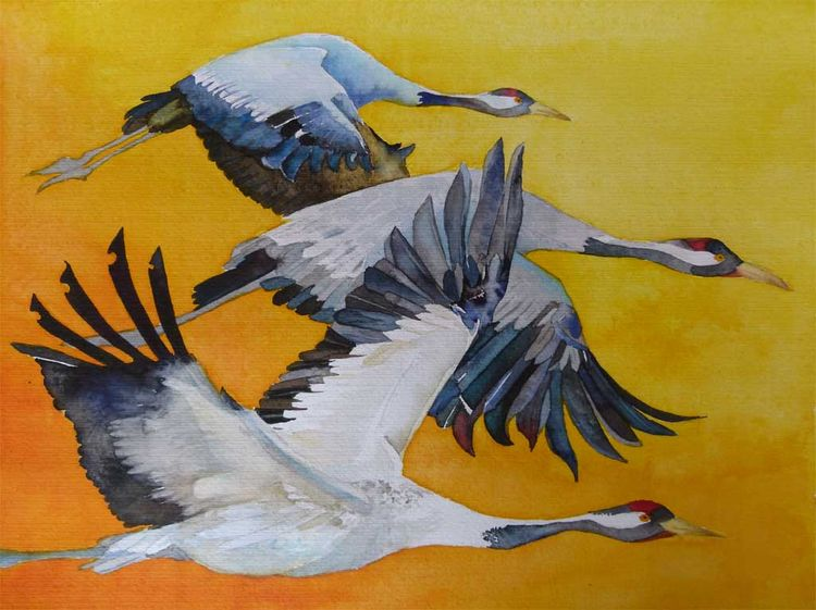 Kranich, Vögel des glücks, Aquarellmalerei, Aquarell,