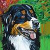 Malerei, Bernersennenhund
