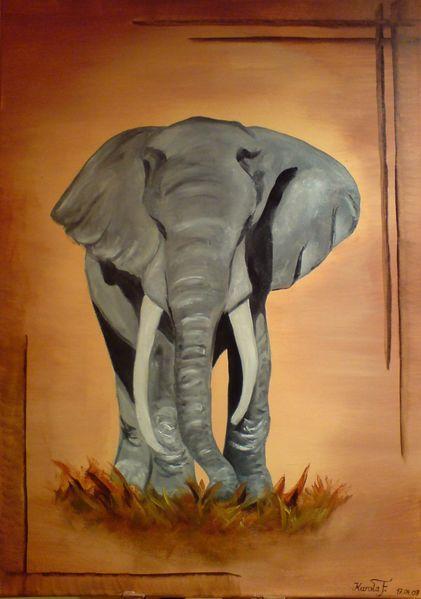 Afrika, Tiere, Tierwelt, Wildnis, Grau, Braun