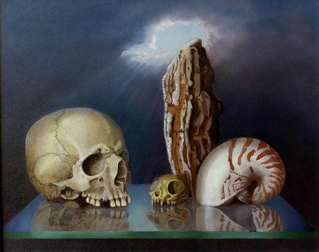 Schädel, Nautilus, Kopf, Scull, Malerei, Stillleben