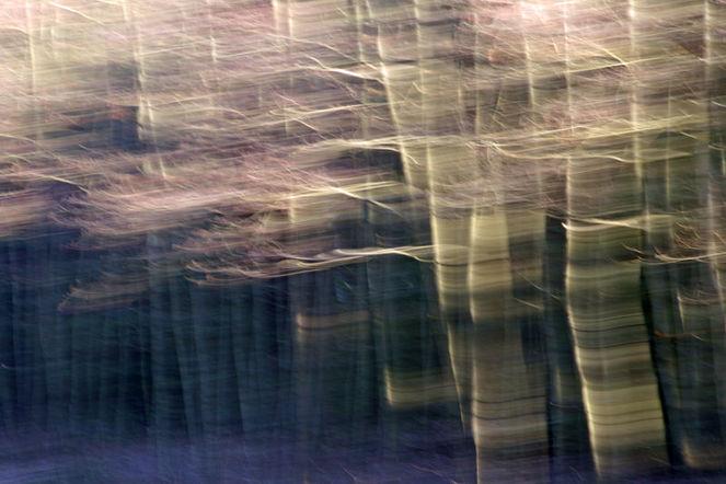 Lightpainting, Verwischen, Wischeffekt, Lichtmalerei, Fotografie, Abstrakt