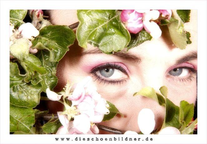 Apfelblüten, Zweig, Gewinnspiel, Frau, Augen, Frühling