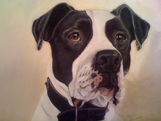 Pastellmalerei, Hund, Malerei, Tiere,