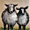Schaf, Tiere, Haustier, Lamm