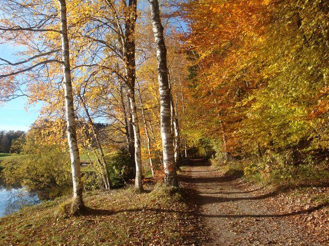 Weilheim, Oberbayern, Herbstlandschaft, Haarsee, Fotografie, Herbst