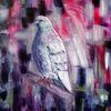 Vogel, Ölmalerei, Taube, Strassentaube