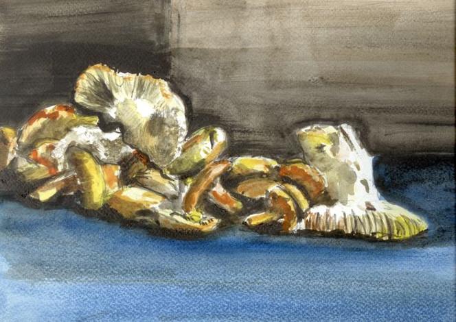 Pilze, Pfifferlinge, Reizker, Malerei, Stillleben