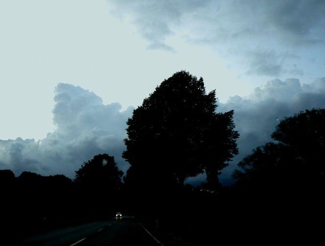 Baum, Wolken, Unwetter, Fotografie, Reiseimpressionen