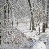Winter sonne, Natur, Schnee, Wald