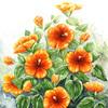 Natur, Eibisch, Blumen, Blüte