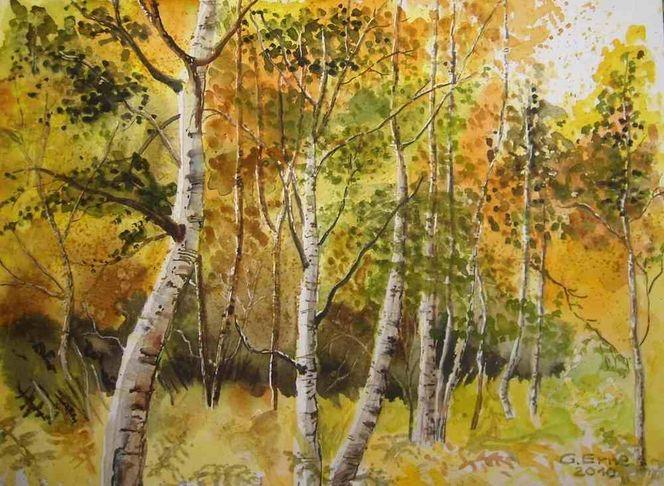 Herbst, Birkenwald, Birken, Aquarell