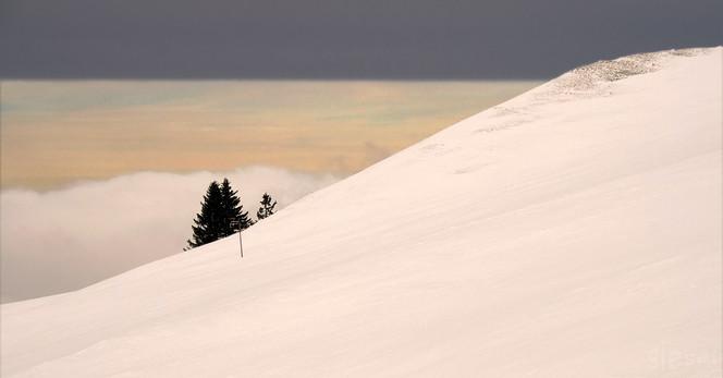 Kälte, Trennung, Luftschicht, Baum, Schnee, Wetter