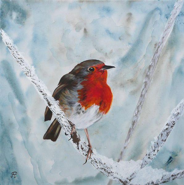 Zugvögel, Eis, Singvogel, Vogel, Winter, Schnee
