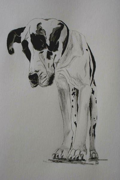 Tiere, Tuschmalerei, Aquarellmalerei, Schwarz weiß, Doge, Hund