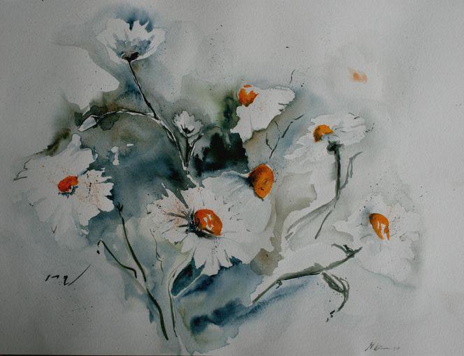 Aquarellmalerei, Margerite, Blumen, Weiß, Blüte, Sommer