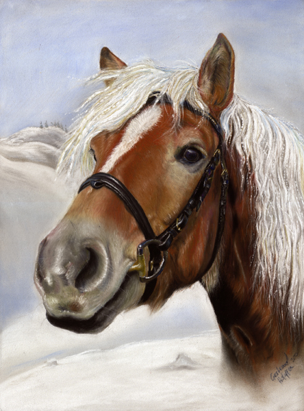 Tiere, Winter, Pastellmalerei, Pferde, Schnee, Malerei