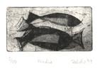 Fisch, Radierung, Druckgrafik
