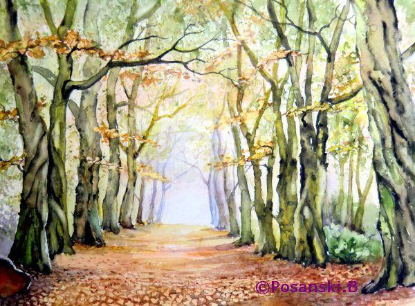Baum, Hainbuchenallee, Landschaft, Allee, Aquarell