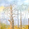 Wald, Wolken, Baum, Natur