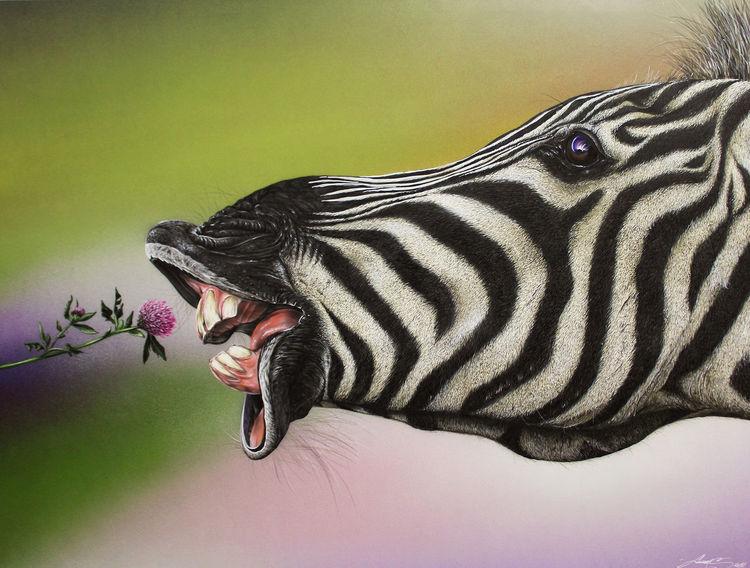 Sprühdose, Airbrush, Zoofitti, Zebra, Malerei