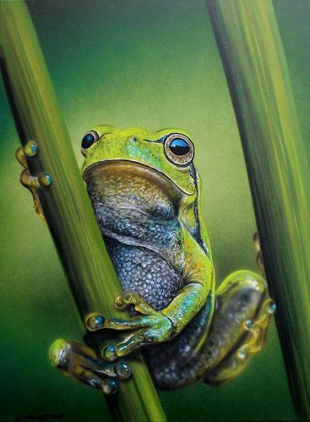 Frosch, Laubfrosch, Malerei