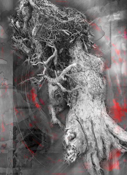 Surreal, Zusammenstellung, Digital, Wirbel, Grau, Metamorphose