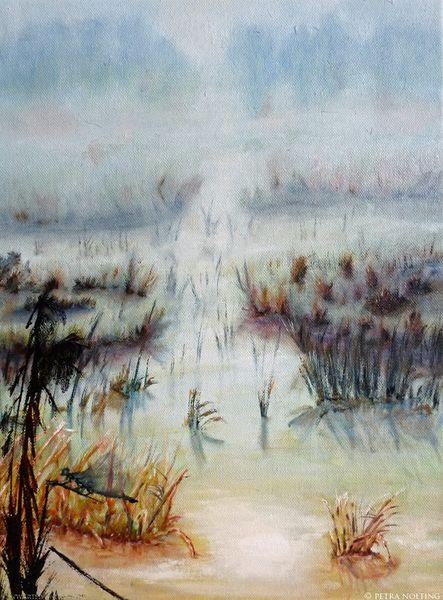 Wasser, Sumpf, Schilf, Landschaft, Nebel, Leben