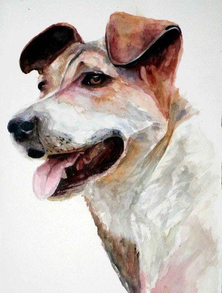Tiere, Aquarellmalerei, Hund, Portrait, Aquarell