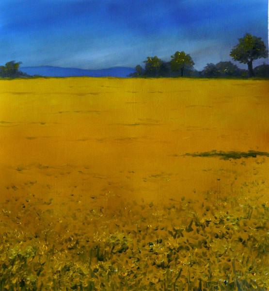 Landschaft, Ölmalerei, Raps, Malerei