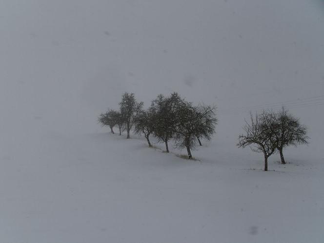Fotografie, Schnee, Winter