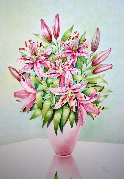 Buntstiftzeichnung, Blumen, Vase, Blüte, Lilien, Zeichnungen