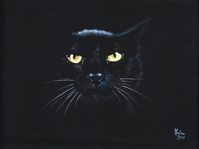 Schwarze katze, Mystik, Nacht, Malerei, Tiere