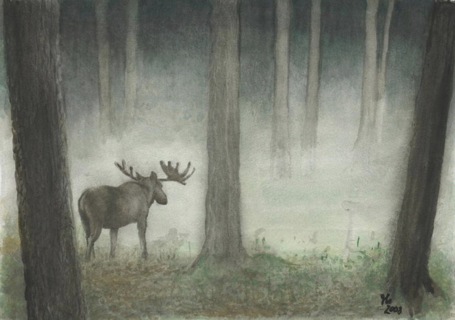 Wald, Elch, Nebel, Aquarell