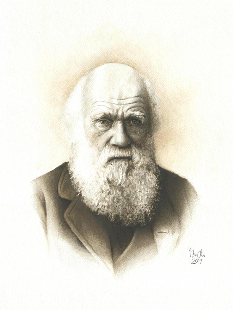 Bild Darwin Fotorealismus Mann Portrait Von Moncha Bei