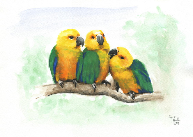 Vogel, Papagei, Aquarell, Tiere