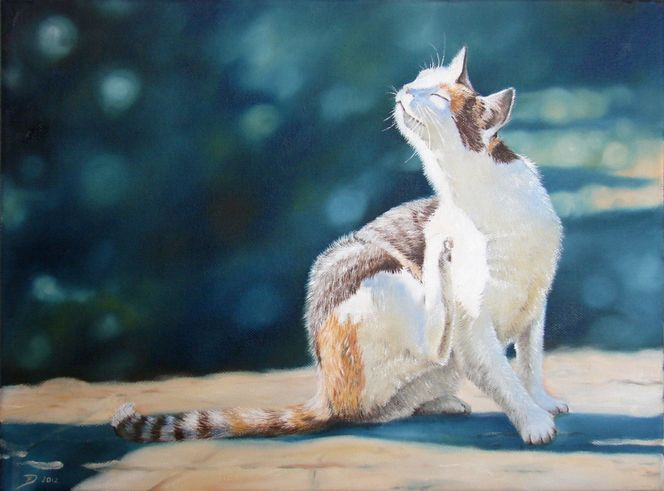 Sonne, Katzenportrait, Ölmalerei, Licht, Katze, Schnurrhaare