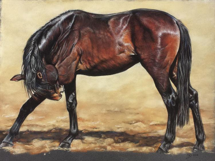 Pferde, Pastellgemälde, Malerei, Tiere