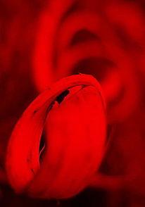 Fotografie, Unscharf, Spirale, Kunstwerk