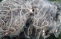 Fischerei, Fischernetze, Netz, Fotografie