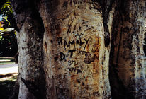 Schnitzkunst, Baum, Erinnerung, Malaysia