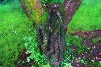 Seil, Wiese, Natur, Baum