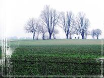 Baum, Feld, Radfahren, Ruhrgebiet