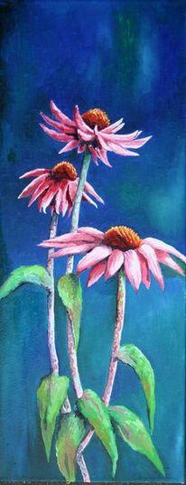 Blumen, Sonnenhut, Licht, Blau