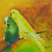Vogel, Tiere, Wellensittich, Auftrag